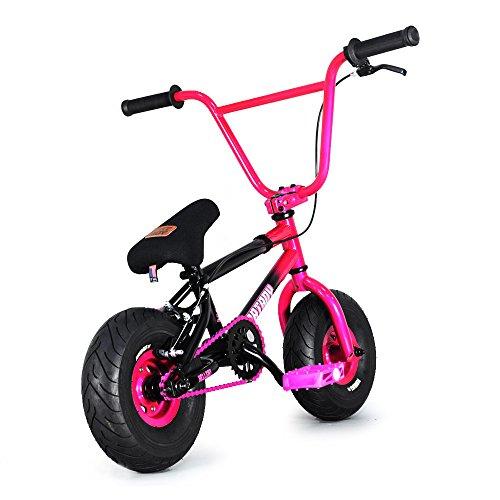 FatBoy Mini BMX Bicycle Freestyle Bike Fat Tires, 2 Tone,...