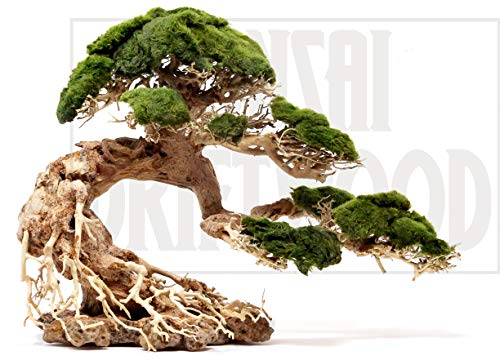 Bonsai Driftwood Aquarium Tree BSD (13 Inch Height- 20 inch Length) Natural, Handcrafted Fish Tank Decoration | Helps Balance Water pH Levels, Stabilizes Environments | Easy to Install ()
