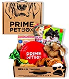 Prime Pet Box Dog Gift Box Care Package - Made in the USA Premium Treats, Plush Rabbit, Rope & Flying Disc