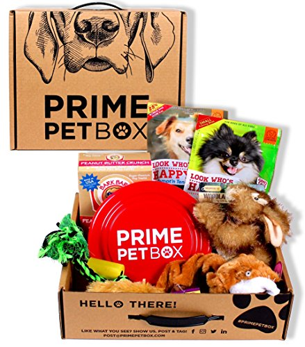 Prime Pet Box Dog Gift Box Care Package - Made in the USA Premium Treats, Plush Rabbit, Rope & Flying (Gifts For Pets)
