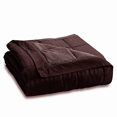 JBFF 250 Thread Count Microfiber Reverse to Fleece Goose Down Alternative Blanket, King, Chocolate)