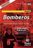 Bomberos de la Diputacion Provincial de Sevilla. Temario.