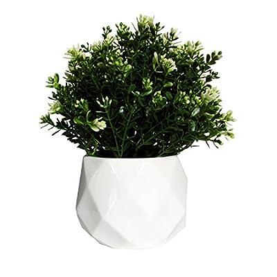 Geometric Succulent Planter - Set of 2 Flower Pots