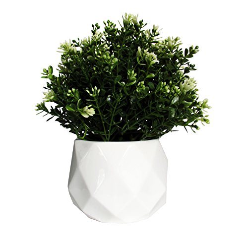 Modern Geometric Succulent Planter, 4.5 inch Tall Flower Pot 1, White Geometric Desk Plant Pot