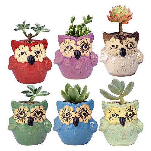 WITUSE Small OwlPot Mini Owl Succulent Pots Glazed Ceramic Plants Pot with Water Drainage-6 Pots