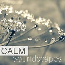 Music for Minfulness Meditation