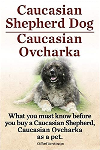 Caucasian Mountain Shepherd For Sale >> Caucasian Shepherd Dog Caucasian Ovcharka What You Must Know