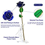 Unite-Stone-Artificial-Rose-Long-Stem-with-Holder-for-Valentines-Day-Mothers-Day-Anniversary-Birthday-Party-Decor-Blue