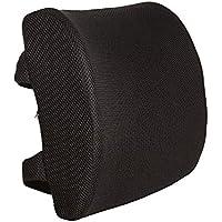 Everlasting Comfort 100% Pure Memory Foam Back Cushion -...
