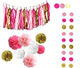 Fascola 25ps Pink Fuchsia Glitter Gold Tissue Paper Pom Pom Tissue Pom Pom Paper Tassel Garland Polka Dot Tissue Poms Paper Garland for Baby Shower Decoration Bridal Shower Pink Gold First Birthday