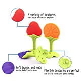 Teething Toys - Tinabless BPA Free Natural Organic