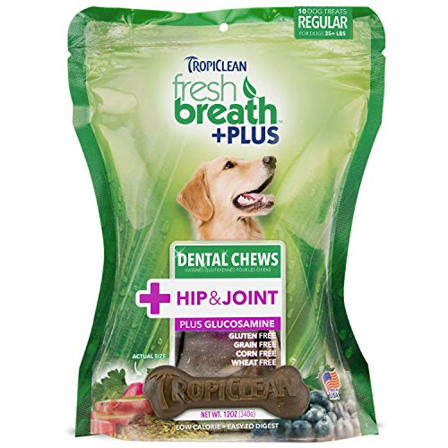 Tropiclean 10 Count Hips and Joint Dental Chews for Large Dogs (Dental Biscuits)