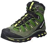 Salomon Men's Quest 4D 2 GTX Hiking Boot (9.5 D(M) US, Tonic Green)
