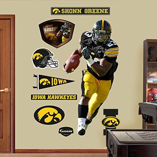 UPC 885671010653, NCAA Iowa Hawkeyes Shonn Greene Wall Graphic