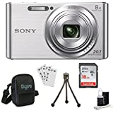 Sony DSCW830 DSCW830 W830 DSC-W830 DSC-W830 DSC-W830 20.1 Digital Camera with 2.7-Inch LCD (Silver) Bundle with 16GB Card, Deluxe Carrying Case, Mini Tripod, Lens Cleaning Kit + Much More