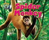 Spider Monkey, Dee Phillips, 1617729124