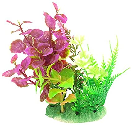 Amazon.com : eDealMax acuario emulational Grass/Planta de agua, DE 5 pulgadas, Verde/Magenta : Pet Supplies