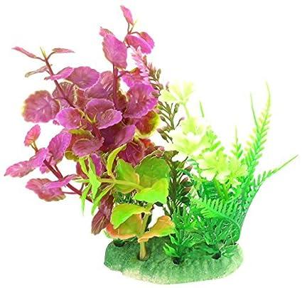 Amazon.com : eDealMax acuario emulational Grass/Planta de agua, DE 5 pulgadas, Verde/Magenta : Pet Supplies