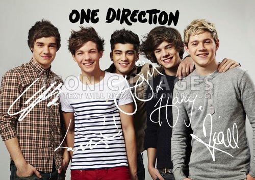 (One Direction 1D (11.7 X 8.3) Pop Music Print Niall Horan Harry Styles Zayn Louis Liam)