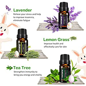 VicTsing Set of 6 Aromatherapy Essential Oils, 100% Pure Therapeutic Grade, Gift Set for Women and Men(Orange, Lavender, Tea Tree, Lemongrass, Eucalyptus, Peppermint, 10ml/bottle)