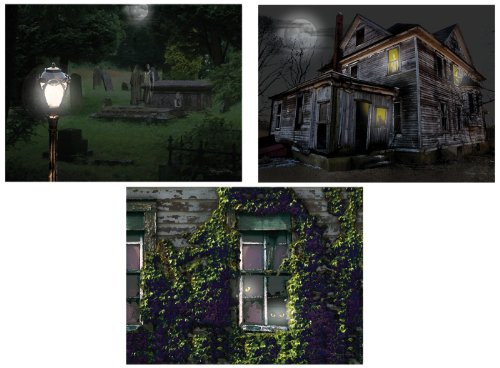 Ohio Wholesale X46192 Radiance Lighted Spooky Canvas Wall Art, from our Christmas Collection -