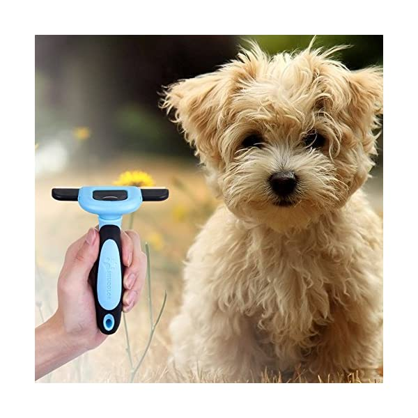 MIU COLOR Pet Deshedding Brush, Professional Grooming Tool, Effectively Reduces Shedding by Up to 95% for Short Hair and Long Hair Dogs Cats 5
