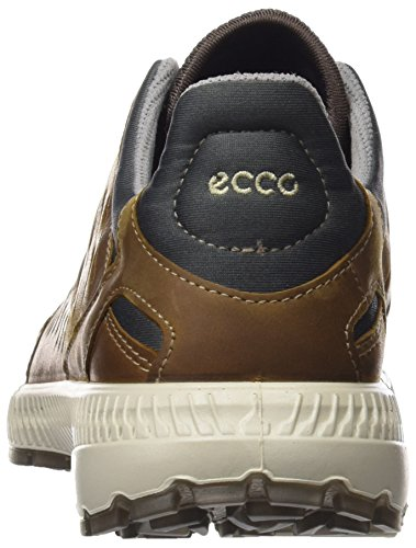 Marrone Scarpe Da Donna cocoa Ecco Brown camel Arrampicata Terrawalk Basse UvnU7TH