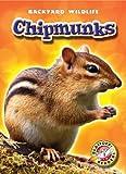 Chipmunks, Derek Zobel, 1600144381