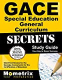 img - for GACE Special Education General Curriculum Secrets Study Guide: GACE Test Review for the Georgia Assessments for the Certification of Educators book / textbook / text book