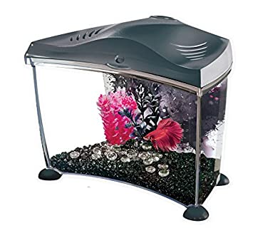 Marina Acuario peces betta grafito de 6,7 l: Amazon.es: Productos para mascotas