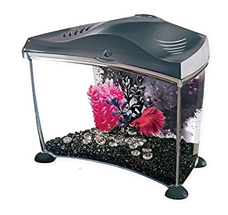 Marina Aquarium pour Aquariophilie Betta Kit Graphite 6, 7 L 13372