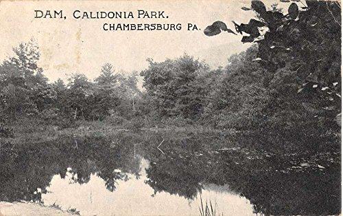 Chambersburg Pennsylvania Calidonia Park Dam Waterfront Antique Postcard K82731