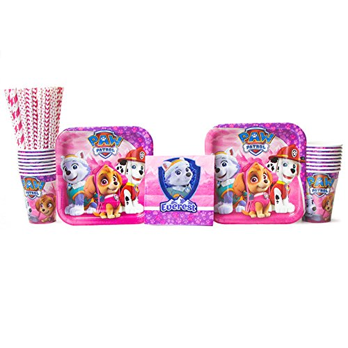 Paw Patrol Girl Party Pack for 16 Guests: Straws, Dessert Plates, Beverage Napkins, and Cups (Bundle for 16) -