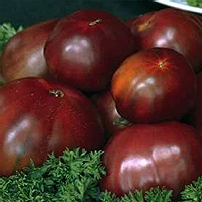 Tomato Garden Seeds - Black Russian - Non-GMO, Heirloom Vegetable Gardening Seed