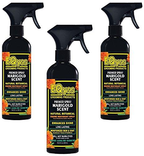 Marigold Horse Spray - 2