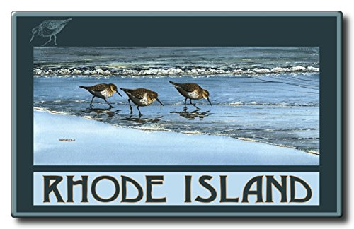 Rhode Island Breakfast At The Beach Aluminum HD Metal Wall Art by Artist Dave Bartholet (11 x 17.6 inch) Art Print for Bedroom, Living Room, Kitchen, Family and Dorm Room - Arches Park Deer At