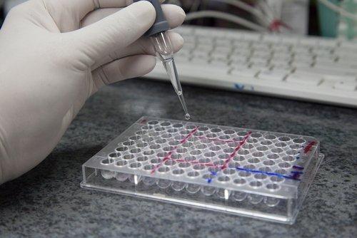 Colorimetric ELISA - HRP Substrate - 1000 Assays