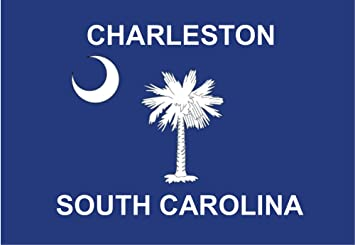 Amazoncom Charleston South Carolina Flag Sc Palm Tree Souvenir