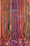 #9: Sheila Hicks: Lifelines