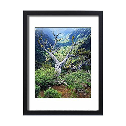 Media Storehouse Framed 24X18 Print Of Usa  Oregon  View Of Steens Mountain At Little Blitzen River Gorge  11164199