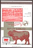 Santa Gertrudis Cattle Breeders International Kingsville TX matchcover
