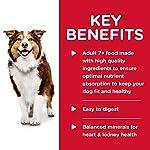 Hills-Science-Diet-Wet-Dog-Food-Adult-7-for-Senior-Dogs-13-oz-Cans-12-Pack