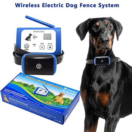Top 15 Best Wireless Dog Fence Detailed Reviews