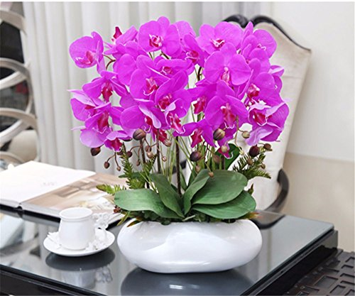 Artificial flowers situmi the best amazon price in savemoney situmi artificial fake flowers the orchid pot plants pu ceramic vasesblue phalaenopsis mightylinksfo