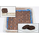 Phillsbury Special Recipe Brownie Cookie Dough, 1.2 Ounce -- 288 per case.