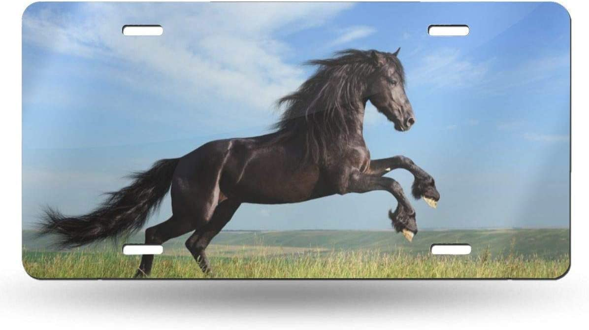 NZDBA Horse Aluminum Car License Plate Cover Auto Truck Car Front Tag License Plate Frame Cover 6x12