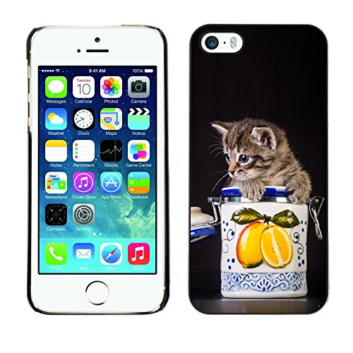 Omega Case PC Polycarbonate Cas Coque Drapeau - Apple iPhone 5 / 5S ( Cute Cat Kitten In A Jar )