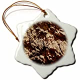 3dRose TDSwhite – Rock Photos - Amazing Rock Formation - 3 inch Snowflake Porcelain Ornament (orn_281881_1)
