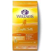 Wellness Complete Health Alimentos naturales para cachorros, pollo, salmón y avena, bolsa de 30 libras