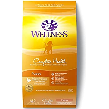 Wellness Core Tender Bites Grain Free Natural Dry Dog Food